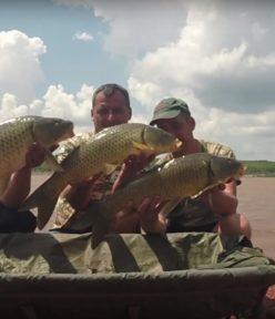Fishing for fun – Element Baits